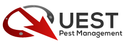 Pest Control of Bed Bugs, Fleas and Cockroaches. Retina Logo