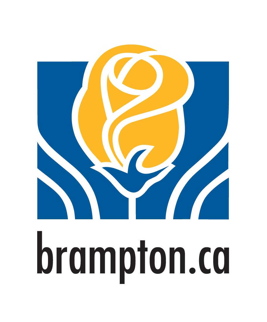 Brampton Volleyball Leagues & Lessons for Youth | Pakmen ...