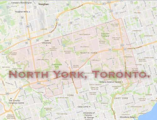 Community of North York – Greater City of Toronto – Pest Control, Extermination and Fumigation Services